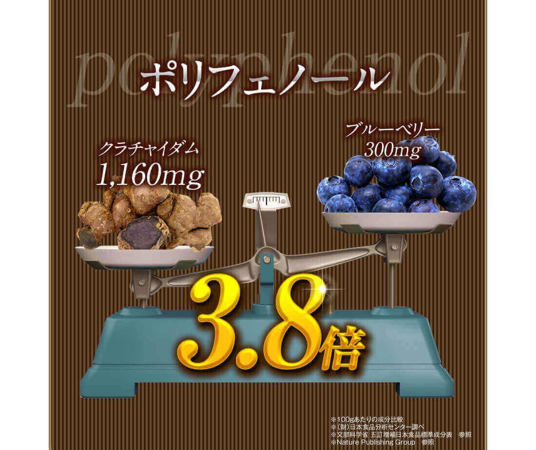 ポリフェノールはブルーベリーの3.8倍